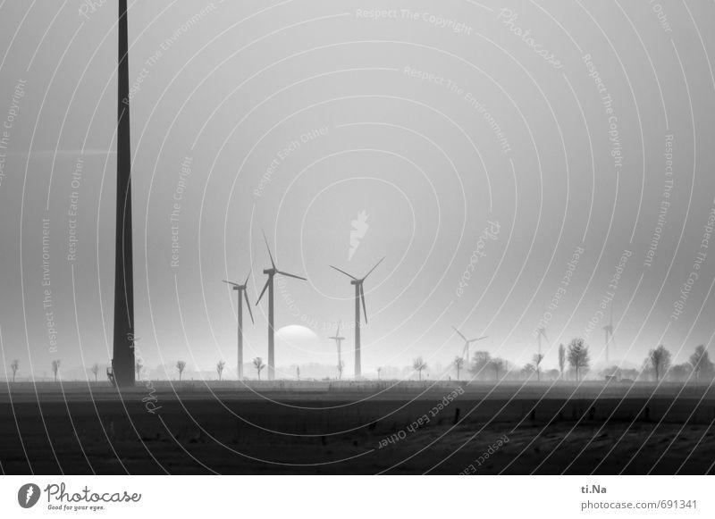 Wöhrden weiß Landschaft schwarz Umwelt Wiese Frühling Gras Horizont Feld groß Tourismus Wandel & Veränderung Windkraftanlage drehen nachhaltig silber