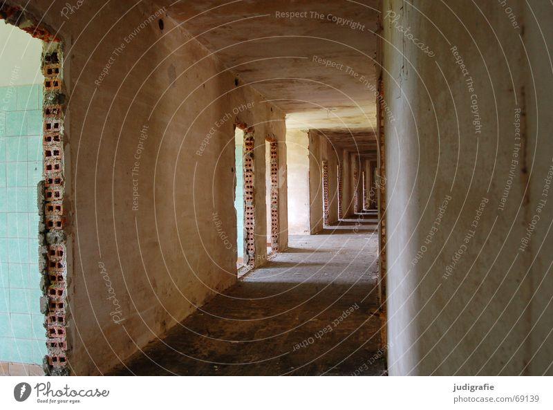 Möglichkeiten alt Haus Wand Wege & Pfade Gebäude Raum Tür Hotel Fliesen u. Kacheln Tunnel Backstein Eingang Ruine Flur