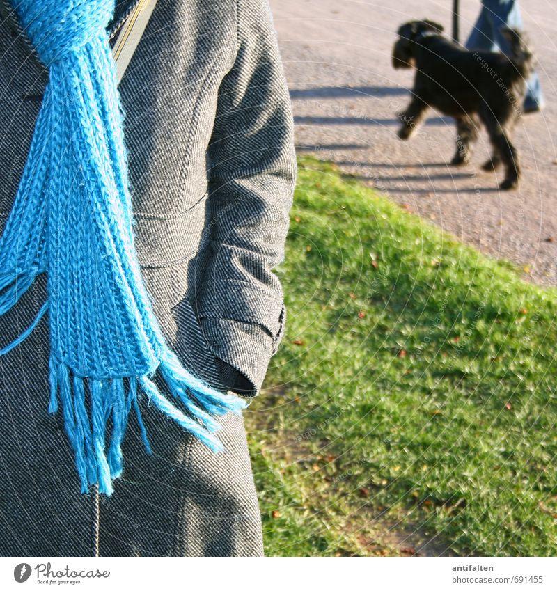 beiläufig Hund Mensch Frau Jugendliche blau grün Junge Frau Freude 18-30 Jahre Tier Erwachsene Wiese feminin grau natürlich außergewöhnlich