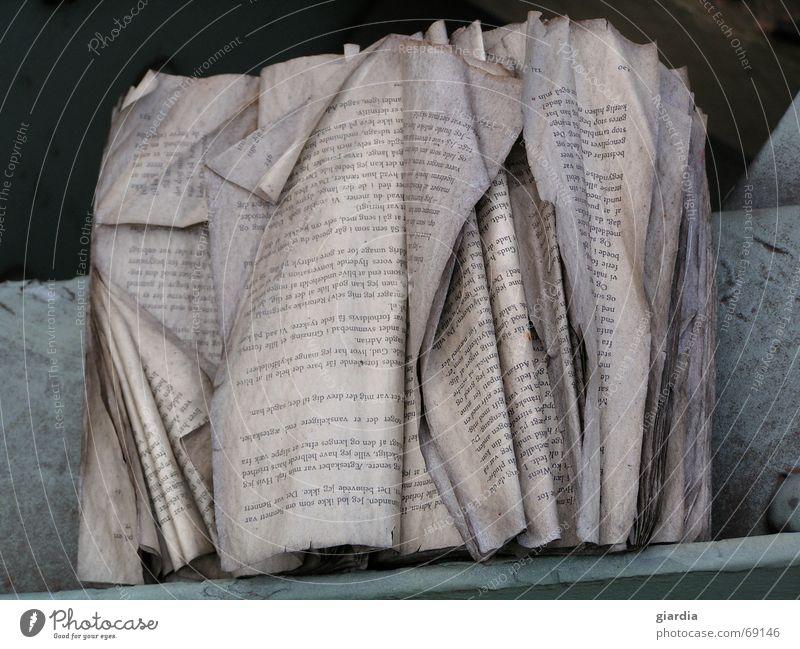 geduldiges Papier alt Buch Wetter lesen Bodenbelag Buchstaben Vergänglichkeit schreiben Zeichen Falte Verfall Hecke Einfluss Fetzen
