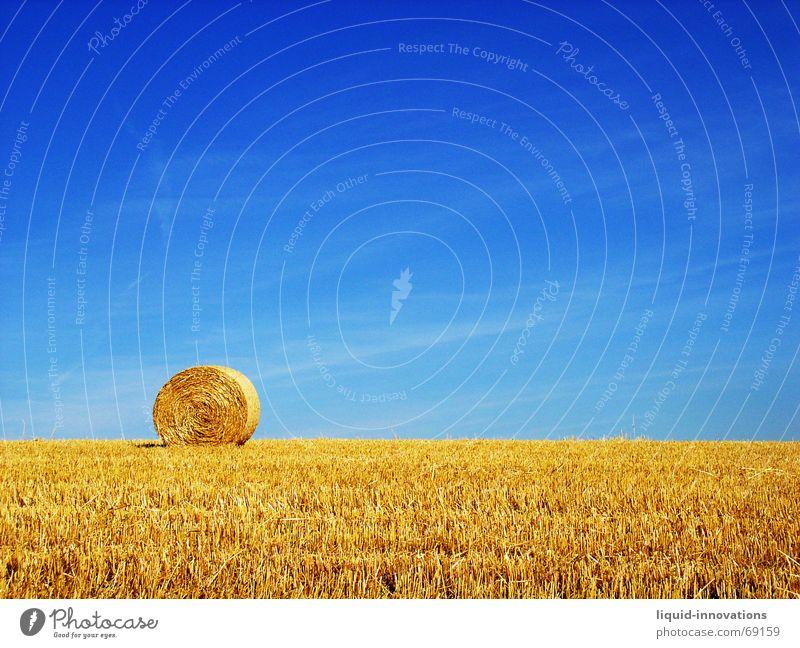 Rundballen II Himmel blau Feld gold Stroh Strohballen Strohrolle
