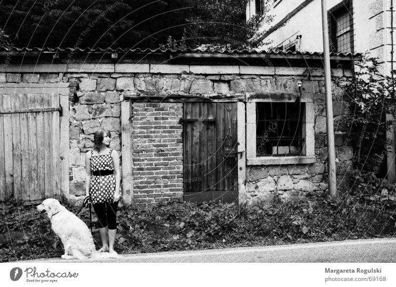 vom Land Hund Frau Kleid Fenster altes haus Punkt Straße