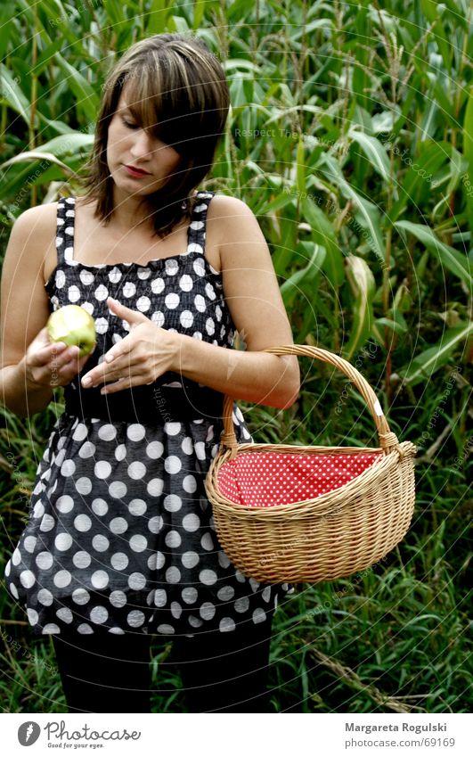 Rotkörbchen und der böse Apfel Frau rot Kleid Punkt Korb Maisfeld