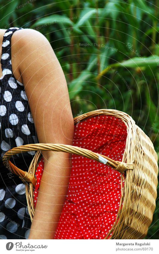 Korb grün rot Arme Punkt geflochten Maisfeld