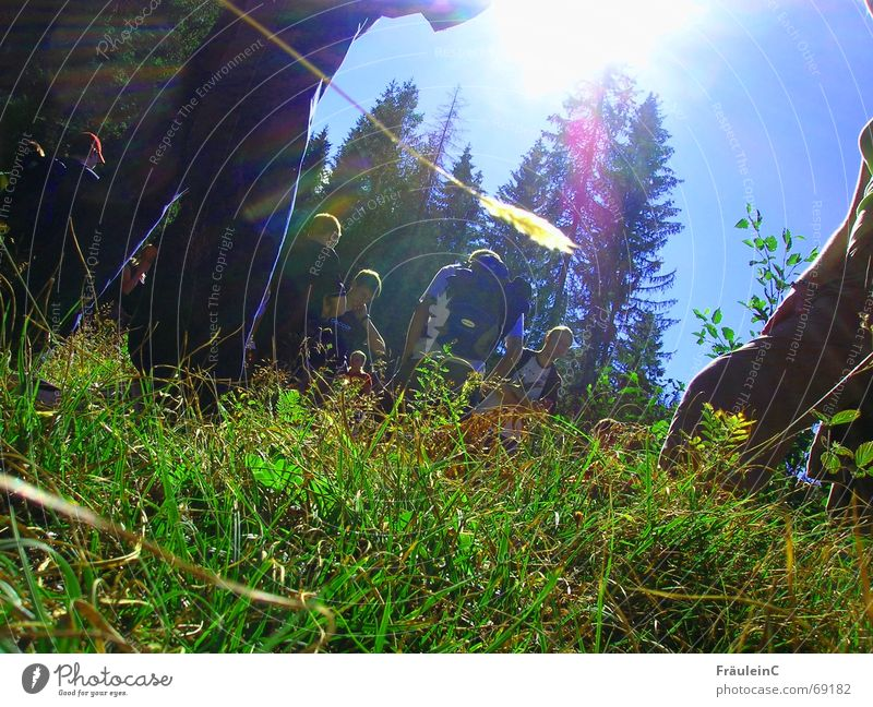 Neue Sicht Mensch Jugendliche schön Baum Sonne grün Freude Gras Berge u. Gebirge Landschaft hell Zusammensein blond wandern hoch Hoffnung
