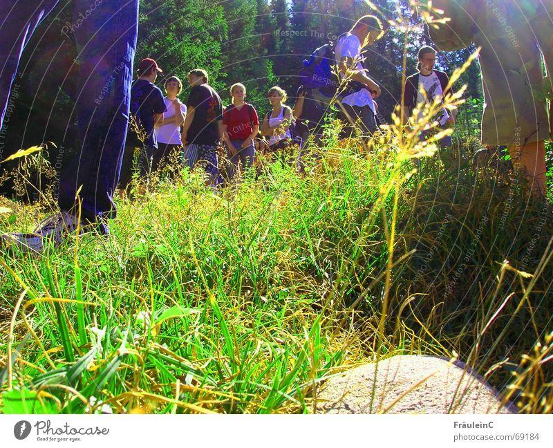 Ich verliere euch nicht aus den Augen Norwegen schön grün blond Zusammensein Gesellschaft (Soziologie) wandern Freizeit & Hobby Skandinavien Gras grell Licht