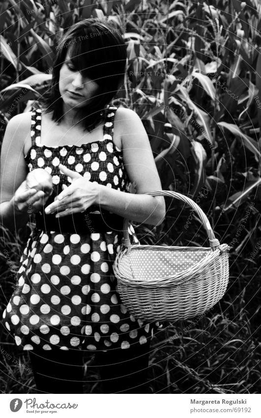 schnelles Picknick im Maisfeld sw Ernährung Feld Kleid Punkt Apfel Korb