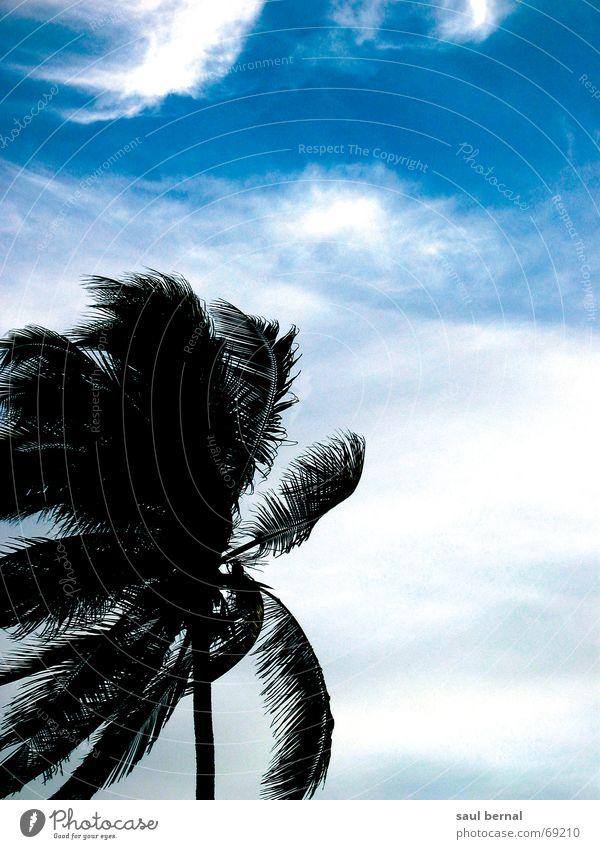 big blue sky Himmel Sommer Strand