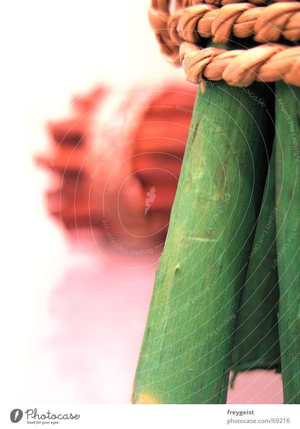 Green Wood 3rd Natur grün Holz Stil braun Seil Schilfrohr Weide Bündel Holzmehl Oberlippe Bast