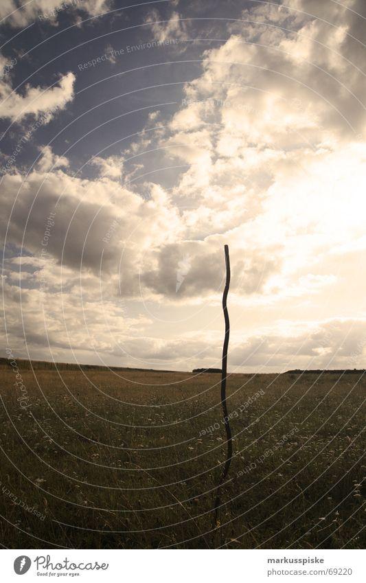 auch stahl kann wachsen Himmel Sonne Wolken Wiese Gras Stahl Eisen