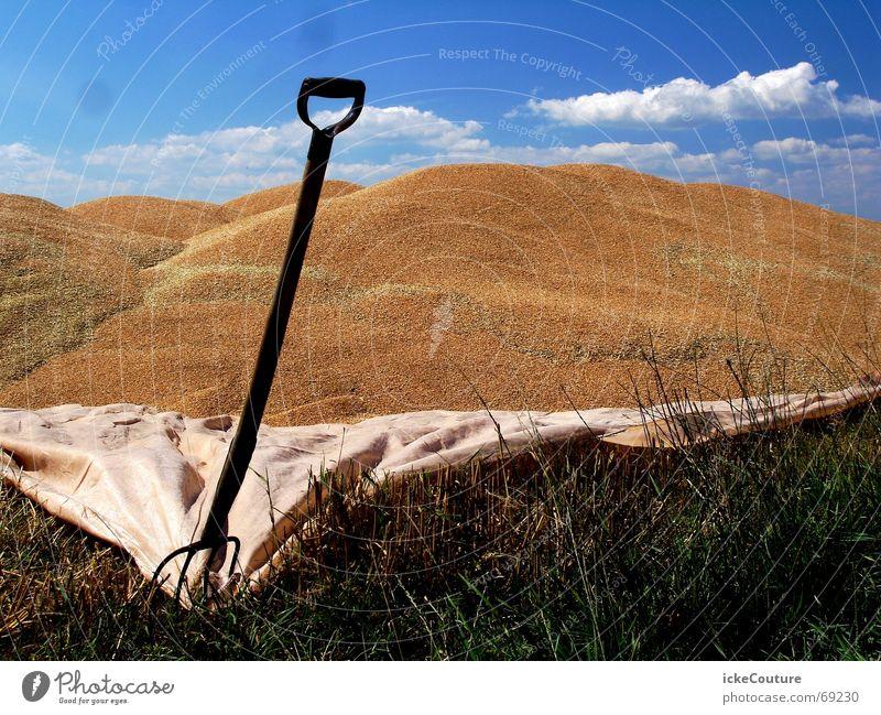 Dünenbau in Dänemark Spaten Schaufel Abdeckung Grenze Blauer Himmel Sand Rasen Stranddüne Berge u. Gebirge