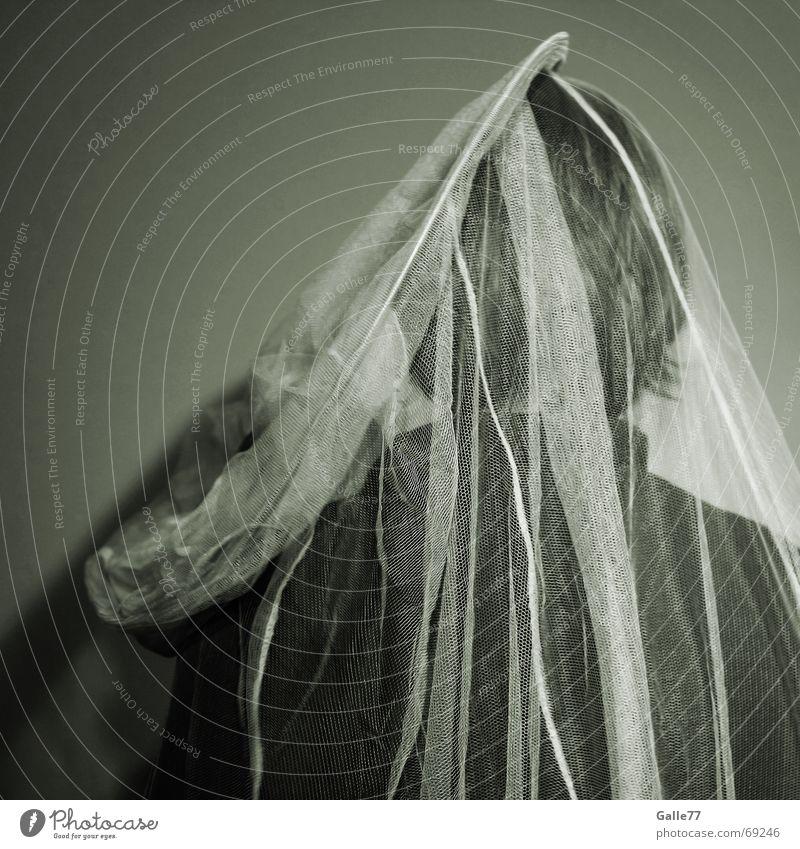 Hochzeitsmarsch Mensch Wand Haare & Frisuren Kopf Rücken verrückt stehen Neigung verstecken drehen Schleier Monochrom ungehorsam Insektenschutz