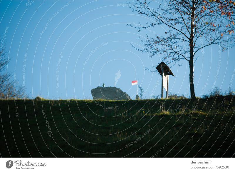 Im Hintergrund ist eine Person zu sehen die auf einem hohen Felsen steht.Rechts von ihm weht eine Fahne am Mast. Im vordergrund steht ein Hinweisschild mit Baum. Der Himmel ist ohne Wolken.Gipfelstürmer