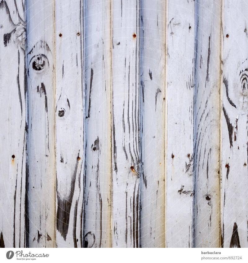 Zebrastreifen Mauer Wand Fassade Tür Holz Zeichen Ornament Linie Streifen grau schwarz Natur Schutz Häusliches Leben Gedeckte Farben Außenaufnahme abstrakt
