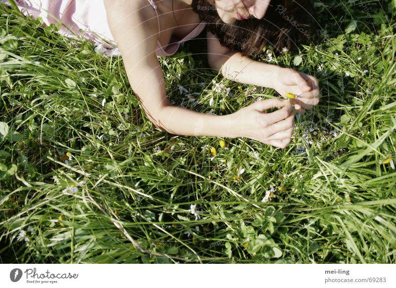 er liebt mich Frau Sommer Gras Gänseblümchen