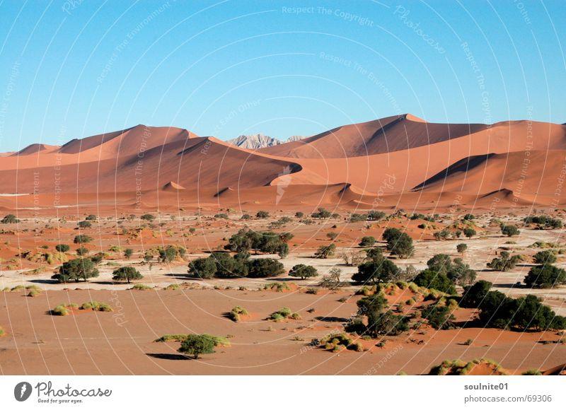 Wüstenzauber Natur ruhig Einsamkeit Ferne Sand Wüste Afrika Stranddüne Aussicht unberührt Namibia Namib Sossusvlei