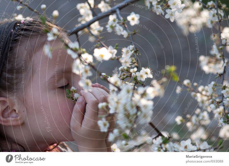 Federgefühl Freiheit Garten Kind Mädchen Gesicht 1 Mensch 3-8 Jahre Kindheit Natur Sonne Frühling Schönes Wetter Baum Blüte Blühend Fröhlichkeit gut schön