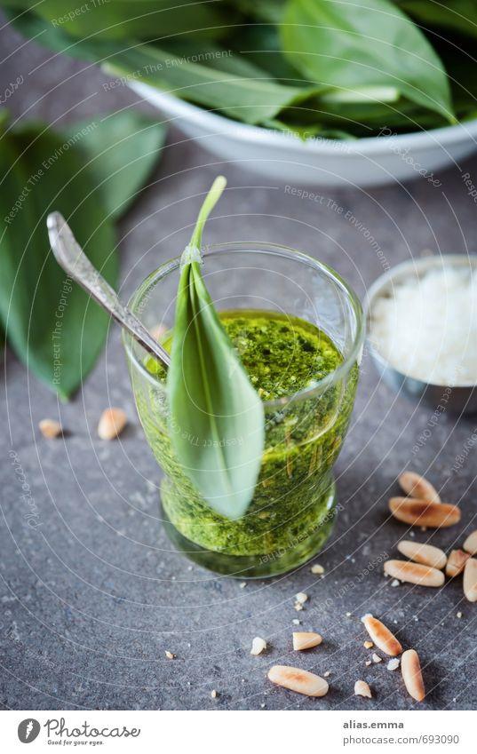 Bärlauchpesto grün Blatt Essen Speise Lebensmittel Foodfotografie Glas genießen Scharfer Geschmack Küche Kräuter & Gewürze lecker Geschmackssinn Öl