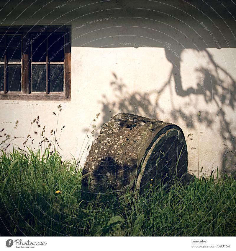 watermill blues Natur Pflanze Sommer Baum Einsamkeit Fenster Wand Traurigkeit Gefühle Senior Frühling Gras Mauer Stein Zufriedenheit Kultur