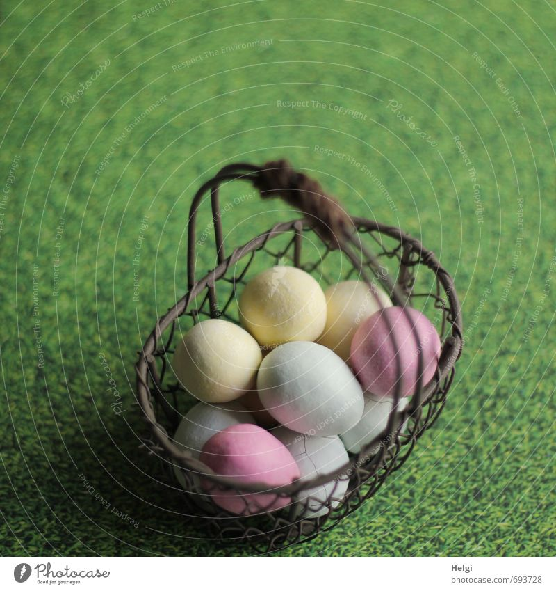 eingesammelt... Lebensmittel Süßwaren Ei Osterei Ernährung Gras Wiese Dekoration & Verzierung Korb Drahtkorb Metall liegen stehen ästhetisch außergewöhnlich