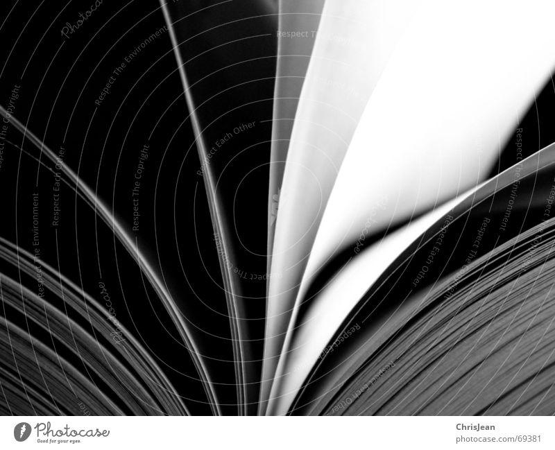 Buchseiten schwarz Arbeit & Erwerbstätigkeit fliegen lernen Schriftstück leer Studium Schriftzeichen Buchstaben lesen Bildung Schnur Wissenschaften Seite