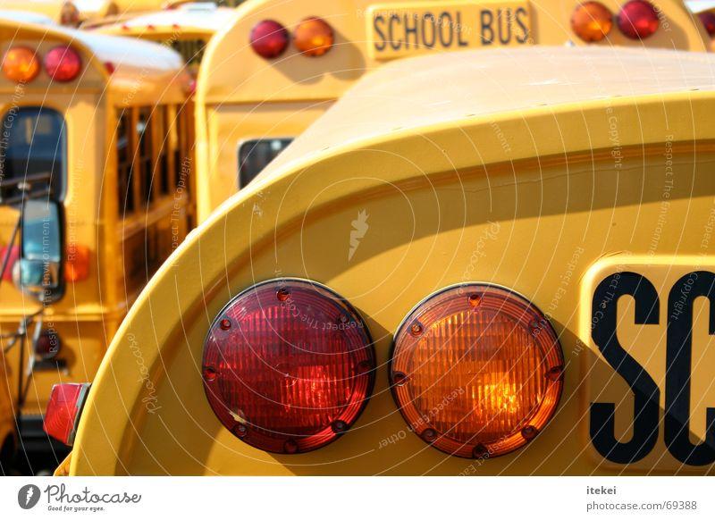 Jump The Bus Schulbus Bremslicht gelb Amerika Rücklicht USA Schule school Schüler Güterverkehr & Logistik transportation pupil