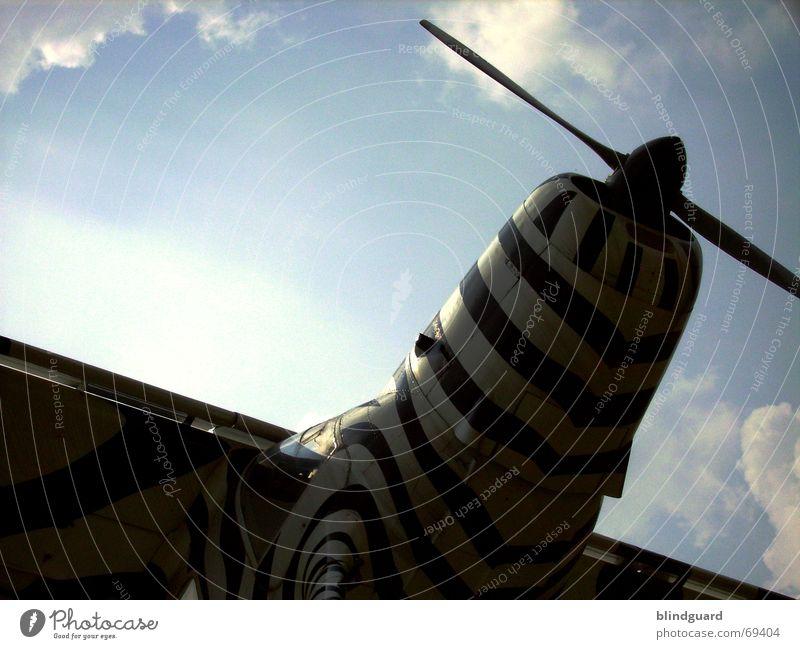 Flieger, grüß mir die Sonne Himmel Ferien & Urlaub & Reisen Wolken oben klein Flugzeug Wind fliegen Luftverkehr Afrika Freizeit & Hobby Tragfläche
