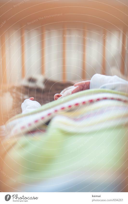 Safe and sound Mensch Erholung ruhig klein liegen träumen Wohnung Häusliches Leben Kindheit Baby niedlich Finger Nase schlafen Bett Geborgenheit
