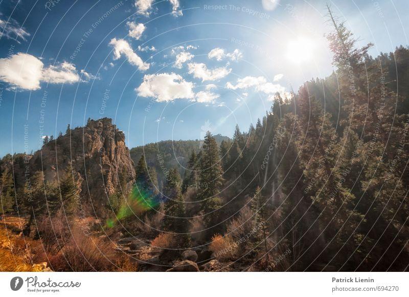 Höhenluft Umwelt Natur Landschaft Pflanze Urelemente Luft Himmel Wolken Sommer Wetter Schönes Wetter Baum Wald Berge u. Gebirge Abenteuer Einsamkeit einzigartig