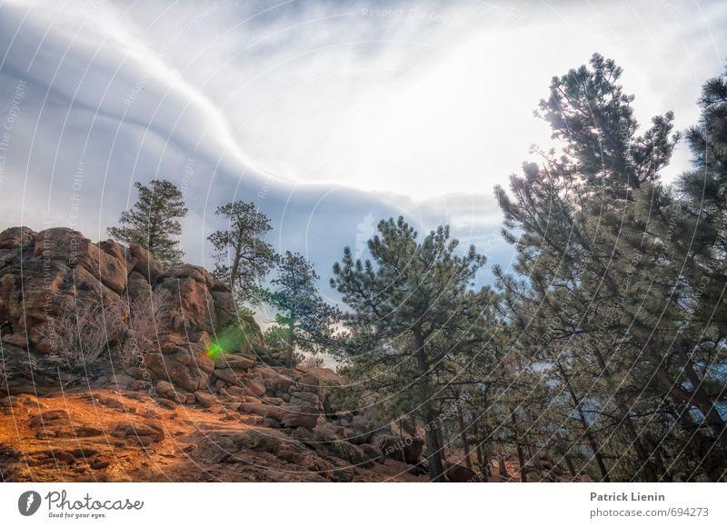 13000ft / 4 Tourismus Ausflug Abenteuer Ferne Freiheit Umwelt Natur Landschaft Urelemente Luft Himmel Wolken Gewitterwolken Klima Wetter Pflanze Baum Sträucher