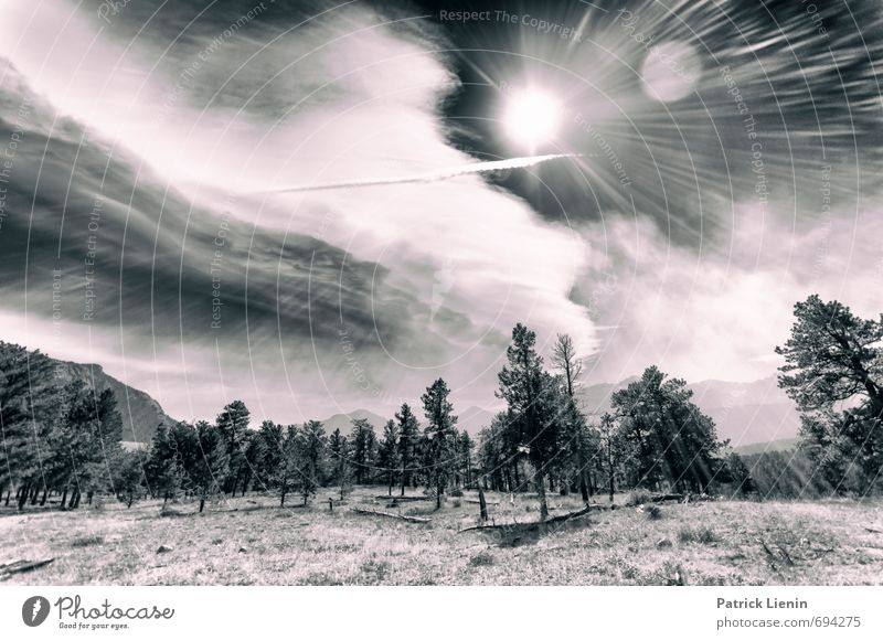 13000ft / 3 Himmel Natur Pflanze Sommer Sonne Baum Landschaft Ferne Wald Umwelt Berge u. Gebirge Wärme Gras Freiheit Felsen Luft
