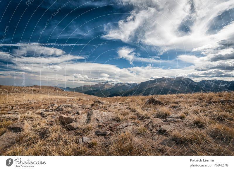 Rocky Mountains Himmel Natur Ferien & Urlaub & Reisen Pflanze Sommer Sonne Blume Landschaft Wolken Ferne Umwelt Berge u. Gebirge Gras Freiheit Felsen Wetter