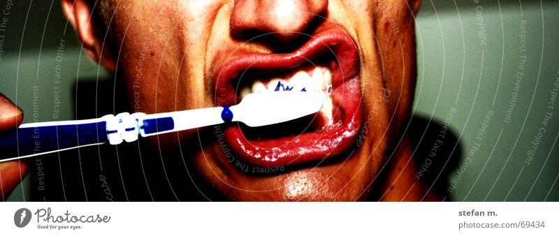 putztag weiß Zähne Bad Lippen Sauberkeit Reinigen Bürste aufstehen Mensch Zahnpflege