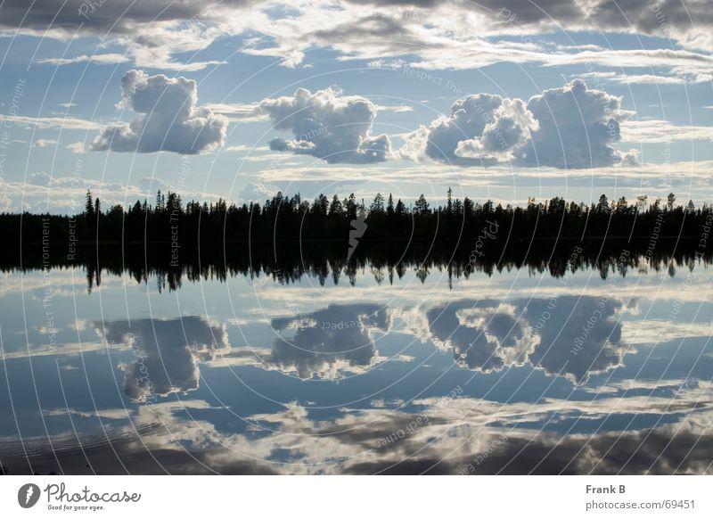 Wolkenspiegelung Wasser Himmel Baum ruhig See Horizont Spiegel Teilung Surrealismus Glätte Oberfläche Spiegelbild Symmetrie Täuschung gleich