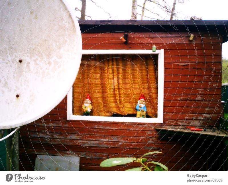 Idylle Gartenzwerge Spießer Camping Fenster weiß Holz Campingplatz Außenaufnahme lustig alt mit gardine Hütte farbe abgeblättert wochenendhaus sat-schüssel