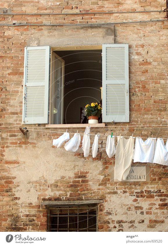 Schönes Italien Fenster Wäsche Wäscheleine Blume Haus Stadt gemütlich Stadtleben offenes fenster altes haus altes mauerwerk