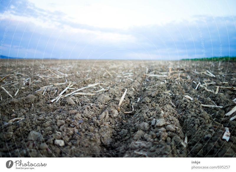 frisch gepflügt Arbeit & Erwerbstätigkeit Feld Feldarbeit Ackerbau Landwirtschaft Forstwirtschaft Umwelt Landschaft Urelemente Erde Luft Himmel Wolken Horizont