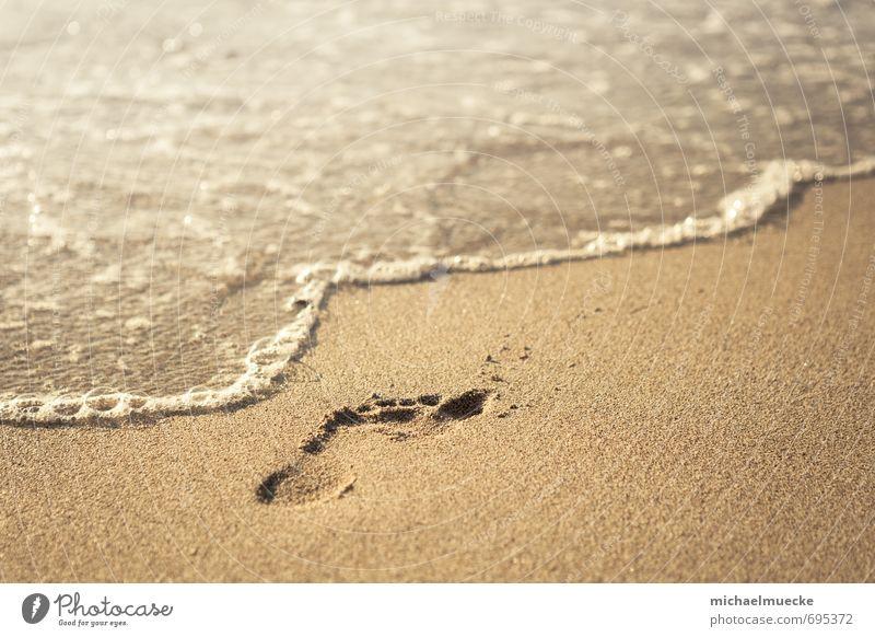 Beach footprint harmonisch ruhig Ferien & Urlaub & Reisen Freiheit Sommer Strand Meer Natur Sand Wasser Fußspur hell gelb gold Stimmung Lebewesen bright calm