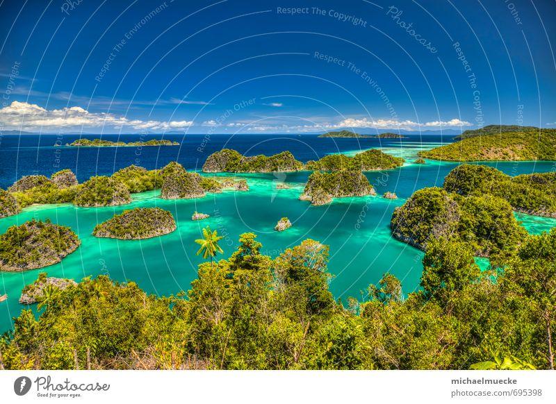 Fam Islands, Raja Ampat, Indonesia Ferien & Urlaub & Reisen Tourismus Ausflug Ferne Meer Umwelt Natur Landschaft Pflanze Wasser Horizont Schönes Wetter Bucht
