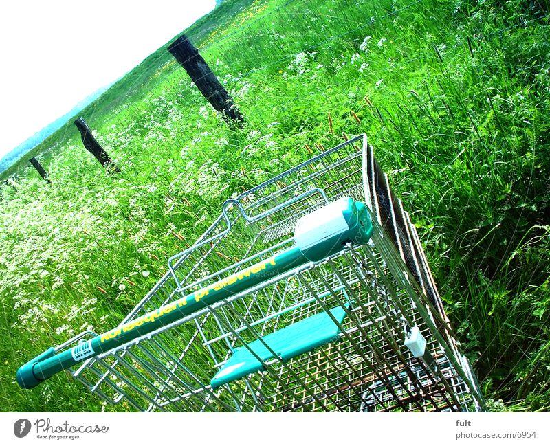 Bioladen Einkaufswagen Gras Berge u. Gebirge Kontrast