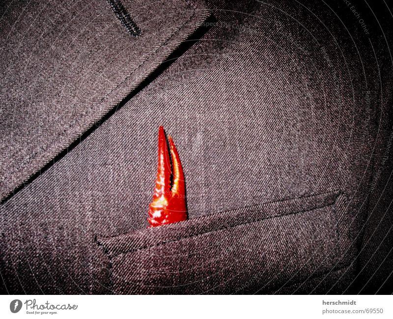 Designerkoch Anzug Bekleidung Jacke Tasche schwarz Kragen Krebstier Krustentier Krabbe Garnelen Hummer Languste rot zwicken Meeresfrüchte Tier Büffet