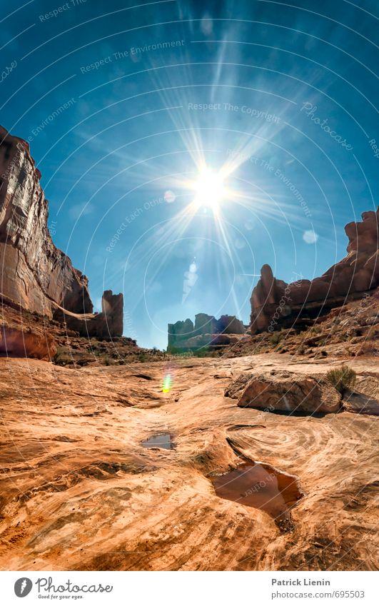 Desert Avenue Ausflug Abenteuer Ferne Freiheit Expedition Sommer Sonne Umwelt Natur Landschaft Urelemente Sand Himmel Wolkenloser Himmel Sonnenaufgang