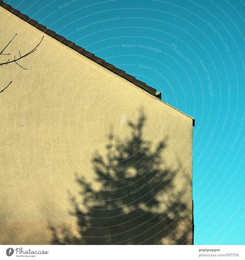 Hauswand Himmel Baum Wand Mauer Wohnung gold Häusliches Leben Dach türkis Dachrinne