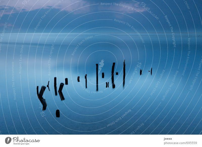 Stiller See Wasser Himmel Wolken Horizont Schönes Wetter Nebel kalt schön blau schwarz ruhig Idylle Holzpfahl Farbfoto Außenaufnahme Menschenleer Abend