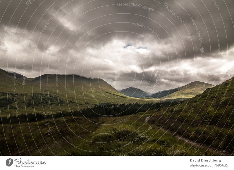 Raues Schottland Himmel Natur Ferien & Urlaub & Reisen grün weiß Sommer Baum Landschaft Wolken Ferne schwarz Wald gelb Berge u. Gebirge Herbst Frühling