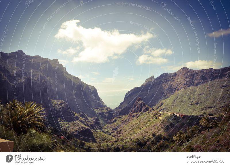 Masca- Schlucht // Teneriffa V Ferien & Urlaub & Reisen Landschaft Ferne Wald Berge u. Gebirge Freiheit außergewöhnlich Felsen Horizont groß Tourismus
