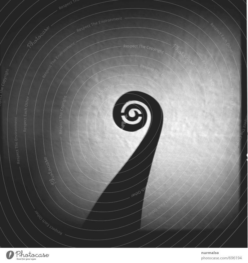 Heck dunkel Lifestyle Holz Kunst außergewöhnlich Wasserfahrzeug ästhetisch rund Sehnsucht rein Schifffahrt Schmuck Museum Skulptur Kunstwerk Spirale