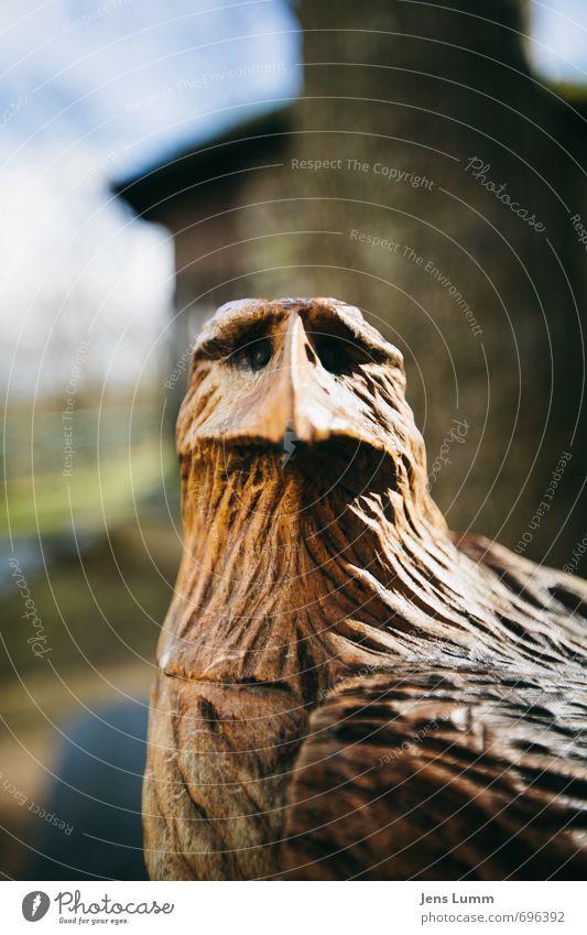 Anchor Man Holz braun Bundesadler Figur Adler ratlos