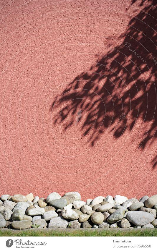 Happy Birthday barbaclara! Wand Schatten Strukturen & Formen Blatt Stein Sockel Gefühle Kieselsteine Farbe schwarz Schicht ästhetisch einfach ruhig