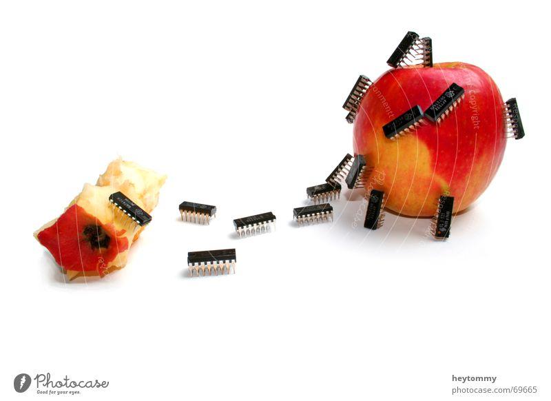 Evil bugs schön Erholung Ferne Entwicklung Tod Spielen Insekt Freiheit Traurigkeit lustig Kunst Computer Arbeit & Erwerbstätigkeit gehen Kraft außergewöhnlich